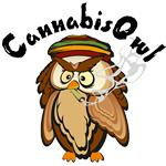 cannabisowl
